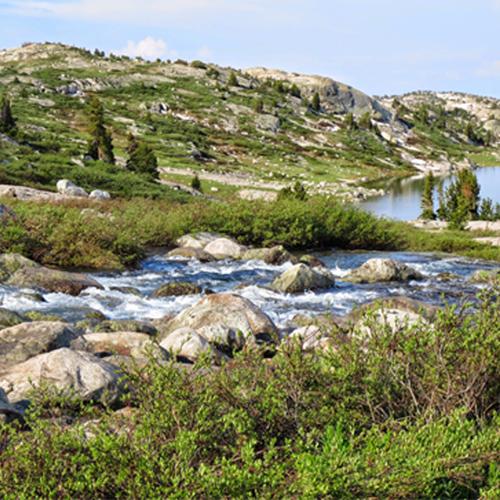 creek-to-lake
